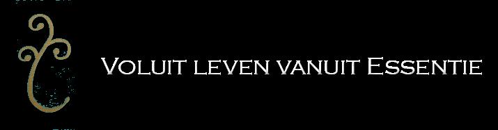 Vlve Mvdk Auteur Op Voluit Leven Vanuit Essentie